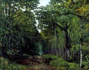 Avenue of Chestnut Trees at La Celle-Saint-Cloud