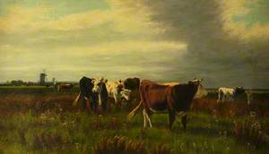 Cows in Pasture with Windmills