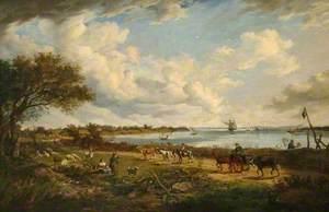 Netley Shore