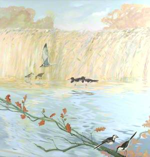 Oyster Catchers and Wagtails