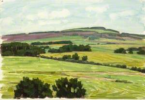 Landscape with Hedgerows