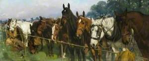 Mixed Company at a Race Meeting