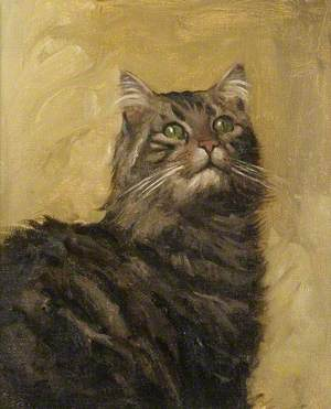 Study of a Cat for 'Teasing'