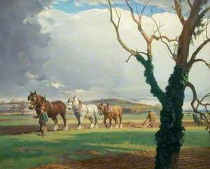 Ploughing on Sandy Heath