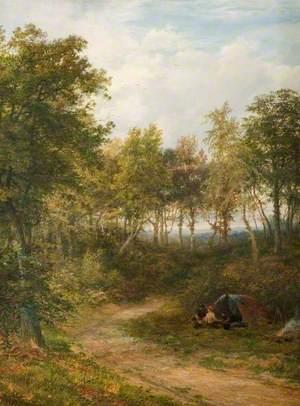 Encampment in Croxley Wood