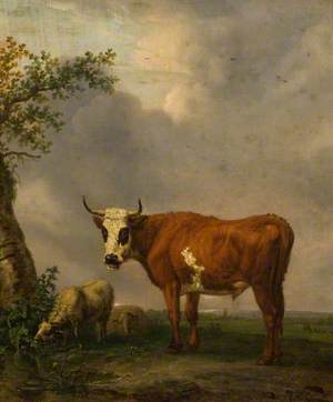 A Bull in a Landscape