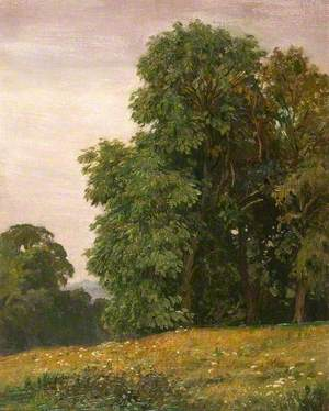 The Lawns, Warham, Herefordshire