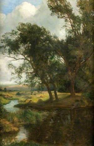 Trees, Lugg Meadows