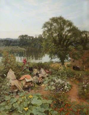 The Miller's Garden
