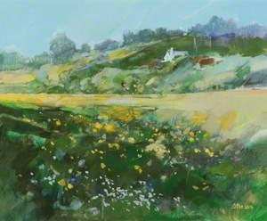 Meadows*