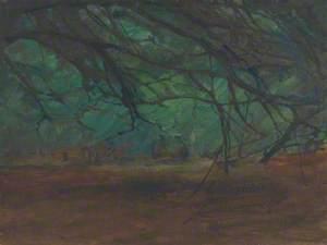 The Forest, Beaulieu
