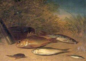 A Catch with Ruffe, Gudgeon and Dace