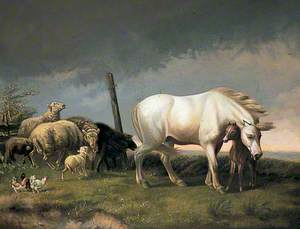 Sheep and Horses in a Wind
