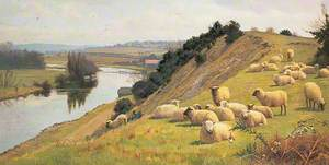 A Riverside Pasture with Sheep