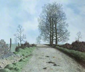 January Landscape, Somerset