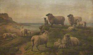 Seaside Landscape with Sheep