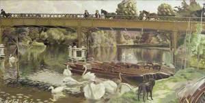 Swans, Cookham Bridge