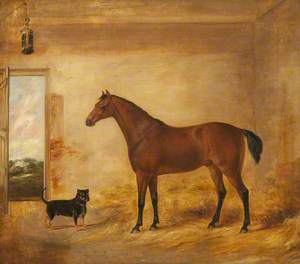 Horse and Dog in Stable