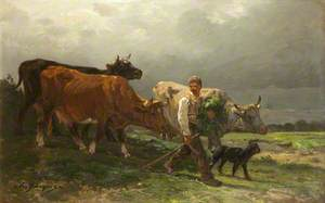 Breton Lad with Cattle