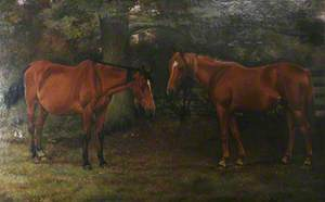 Two Horses by a Wood