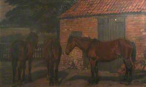 Three Brown Horses Standing Outside a Stable