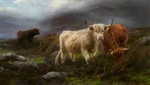 The Highland Pastures