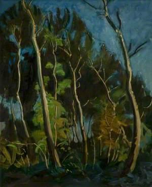 Paysage aux grands arbres