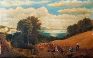 Harvesting Scene