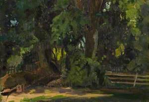 Woodland Study