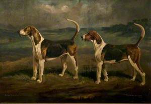 Quorn Hounds, 'Cruiser' and 'Woeful'