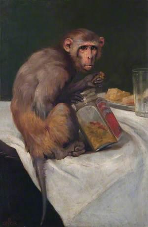 Monkey and a Jar