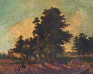 The Seven Sisters Trees