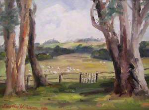 Sheep in Fields with Trees