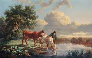 Cattle Drinking at the River Edge