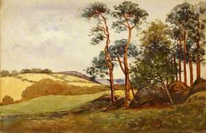 A Landscape*