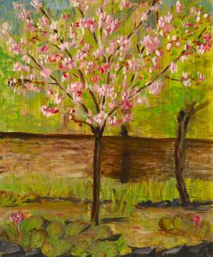 Flowering Cherry Tree, 95 Lee Road