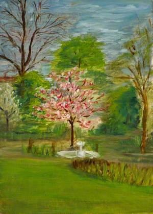 Flowering Cherry Tree, Back Garden