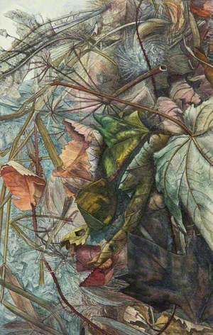 Windswept Leaves