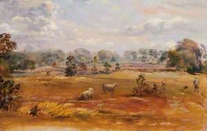 Purley Downs, Sanderstead, Surrey, 1870