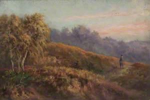 Evening on Addington Hills, Croydon, Surrey