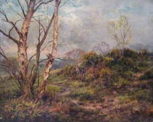Addington Hills, Croydon, Surrey, April 1896