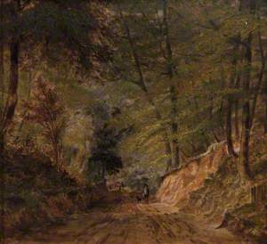 Road to Holme Wood