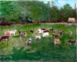 Kent and Fenton, Upper Caterham, Surrey, St Marwick's Dairy, 1898