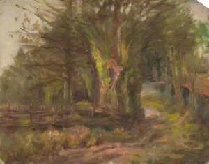 Culvert Lane