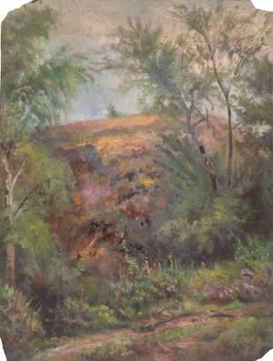 Addington Hills, Croydon, Surrey