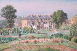 Gardens at Hammersmith Allotments