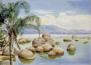 Palm Trees and Boulders in the Bay of Rio, Brazil