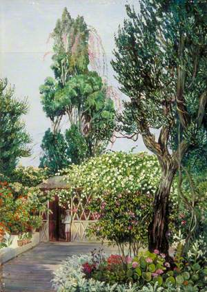 Scene in Mr Smith's Garden, Teneriffe