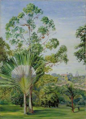 View of the Maharajah of Johore's House from Major McNair's Garden, Singapore