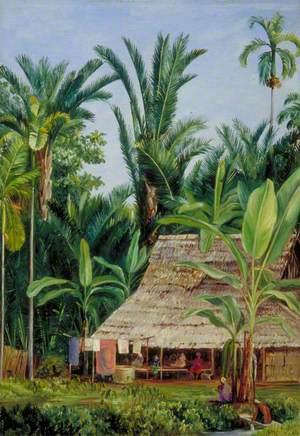 A Tailor's Shop in the Botanic Garden, Buitenzorg, Shaded by Sago Palms and Bananas